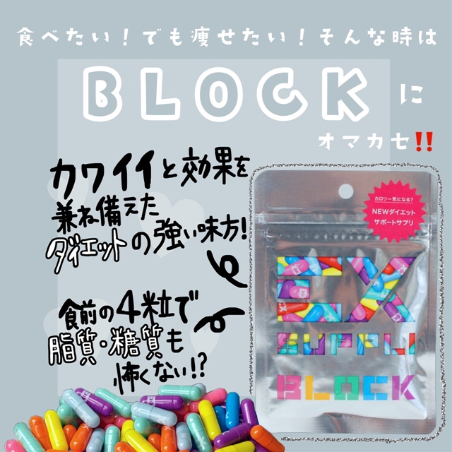 EX SUPPLI BLOCK 120粒 30回分